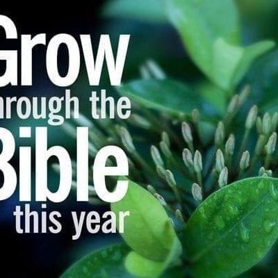 grow-through-bible-preview
